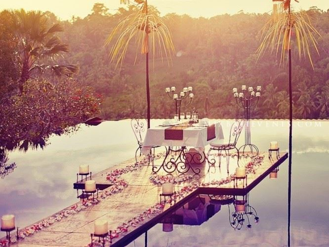 Romantic dinner in the jungle